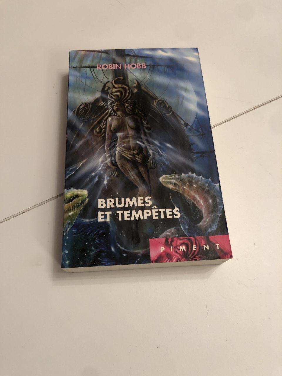 Image article Brume et tempête.
