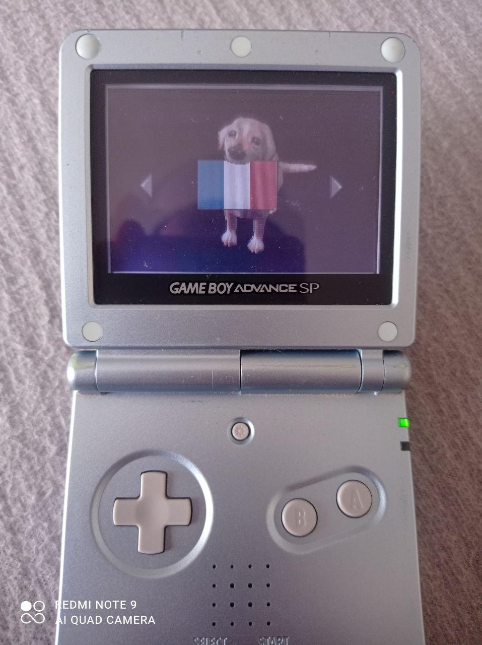 Image article Nintendo - Game Boy Advance - Léa passin vétérinaire